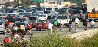 Bicycle Traffic
